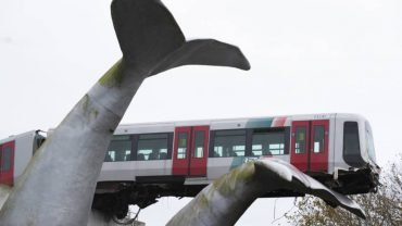 how whale stopped a train